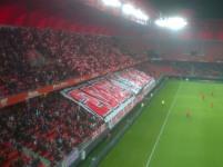 Stade du Hainault - Vue 6