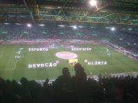 Sporting - Benfica (3)